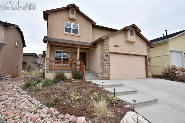 2523 Mirror Lake Court, Colorado Springs, CO 80919 (#4158900) :: CC Signature Group