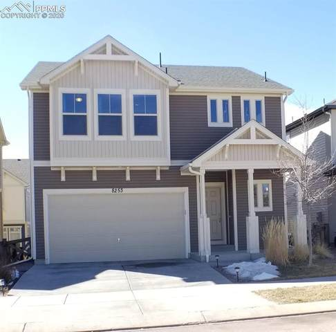 8253 Cypress Wood Drive, Colorado Springs, CO 80927 (#4159587) :: Action Team Realty