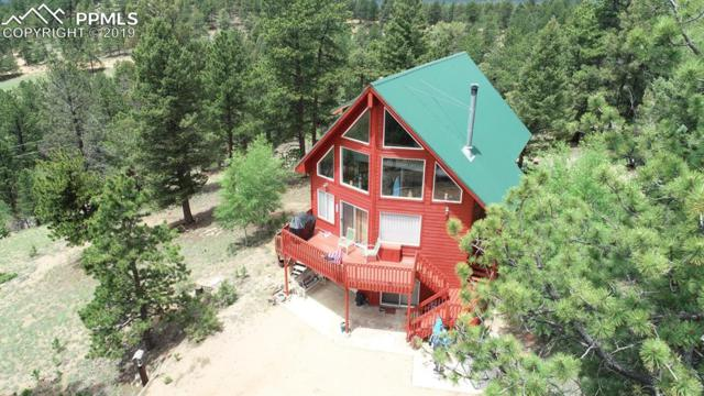 75 Blackhawk Circle, Florissant, CO 80816 (#4160116) :: CC Signature Group