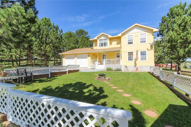 37 Rimrock Circle, Florissant, CO 80816 (#4160892) :: 8z Real Estate