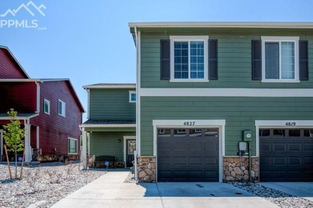 4827 Painted Sky View, Colorado Springs, CO 80916 (#4161918) :: Harling Real Estate