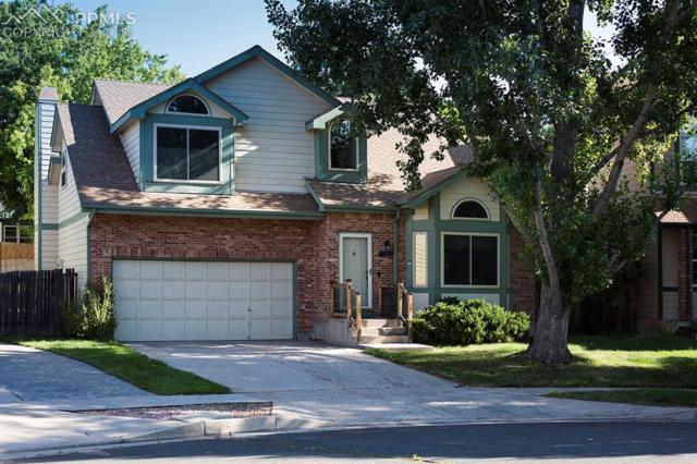 7030 Native Circle, Colorado Springs, CO 80919 (#4164692) :: The Treasure Davis Team