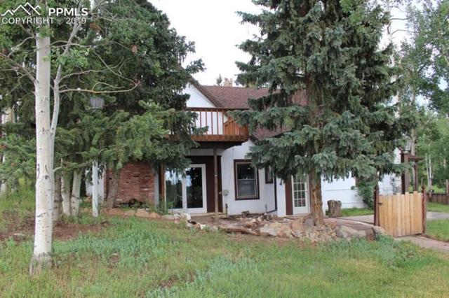 309 Prospect Street, Cripple Creek, CO 80813 (#4168023) :: The Peak Properties Group