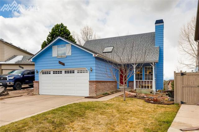 4747 N Bearlily Way, Castle Rock, CO 80109 (#4168087) :: Action Team Realty