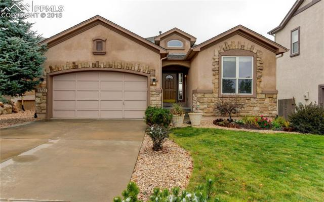 3725 Cherry Plum Drive, Colorado Springs, CO 80920 (#4170673) :: CENTURY 21 Curbow Realty
