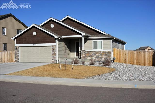 6551 Justice Way, Colorado Springs, CO 80925 (#4173784) :: RE/MAX Advantage