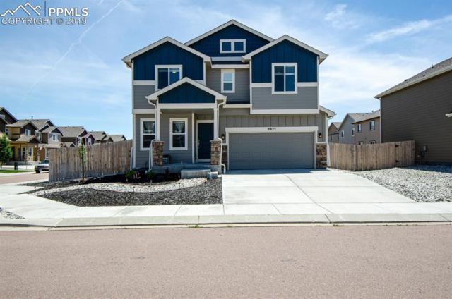 9923 Silver Stirrup Drive, Colorado Springs, CO 80925 (#4176579) :: CC Signature Group
