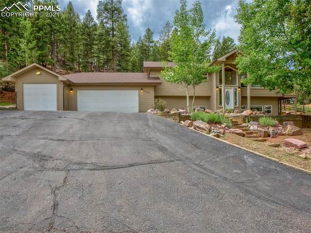 1441 Crestview Way, Woodland Park, CO 80863 (#4179488) :: HomeSmart