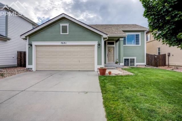 7691 Steward Lane, Colorado Springs, CO 80922 (#4180712) :: Harling Real Estate