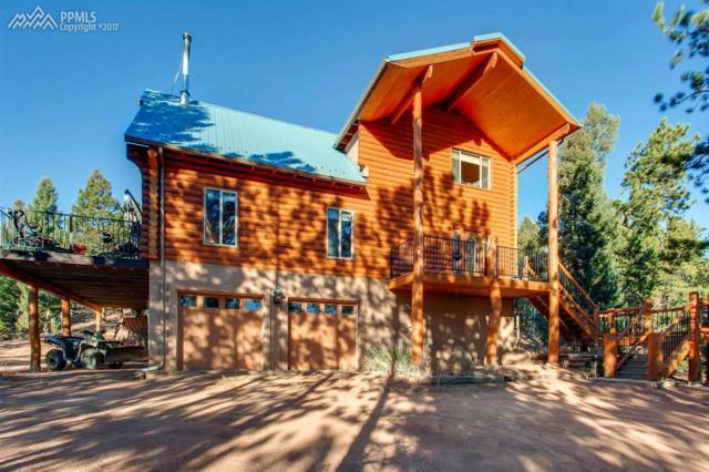 3779 Trout Creek Road, Woodland Park, CO 80863 (#4186838) :: 8z Real Estate