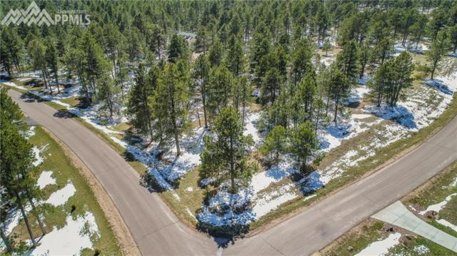 19520 Twisted Pine Drive, Colorado Springs, CO 80908 (#4187896) :: 8z Real Estate