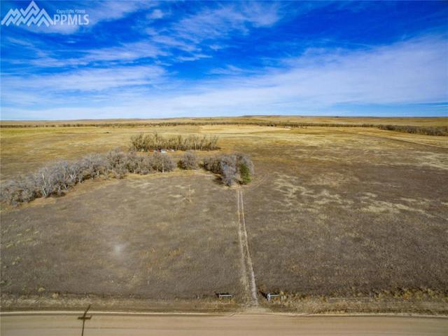 45277 County 118 Road, Elbert, CO 80828 (#4190498) :: Jason Daniels & Associates at RE/MAX Millennium