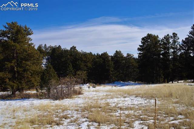 202 Pike View Lane, Florissant, CO 80816 (#4193322) :: Action Team Realty