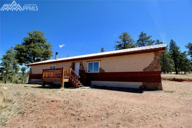 38 Paint Brush Drive, Florissant, CO 80816 (#4194917) :: 8z Real Estate