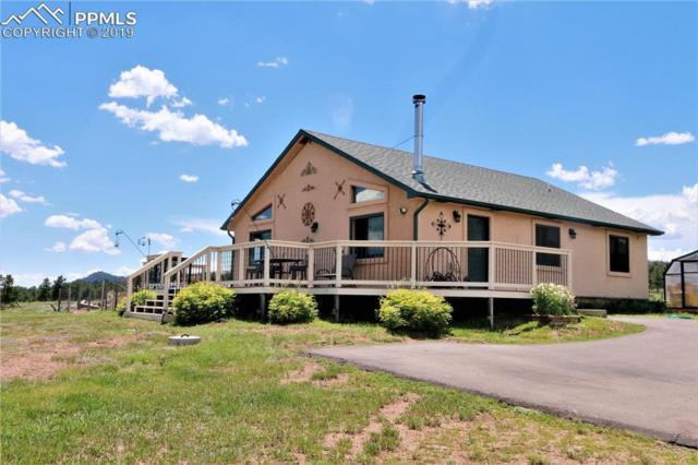 12823 County 1 Road, Florissant, CO 80816 (#4197202) :: Action Team Realty