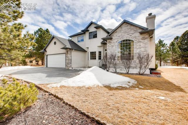 20380 True Vista Circle, Monument, CO 80132 (#4199798) :: The Treasure Davis Team