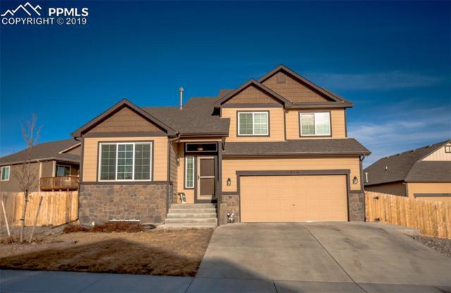 6516 Dancing Star Way, Colorado Springs, CO 80911 (#4203858) :: 8z Real Estate