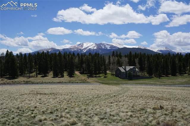 193 Joshua Road, Divide, CO 80814 (#4203925) :: Fisk Team, RE/MAX Properties, Inc.