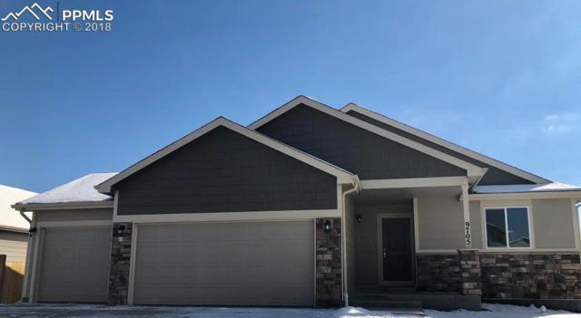 9705 Rubicon Drive, Colorado Springs, CO 80925 (#4207245) :: The Treasure Davis Team