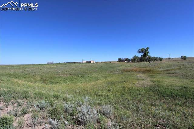 27963 Propel Point, Calhan, CO 80808 (#4225958) :: Action Team Realty