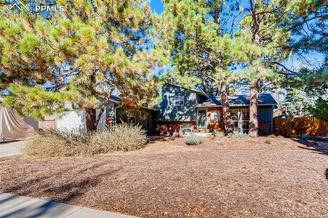 5040 Chickweed Drive, Colorado Springs, CO 80917 (#4226359) :: Venterra Real Estate LLC