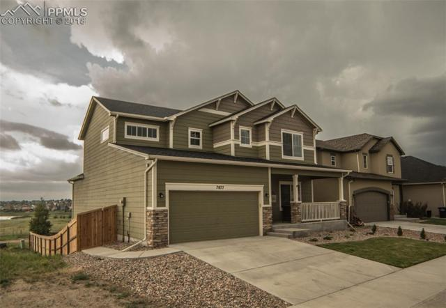 7877 Stockton Drive, Fountain, CO 80817 (#4229212) :: Jason Daniels & Associates at RE/MAX Millennium