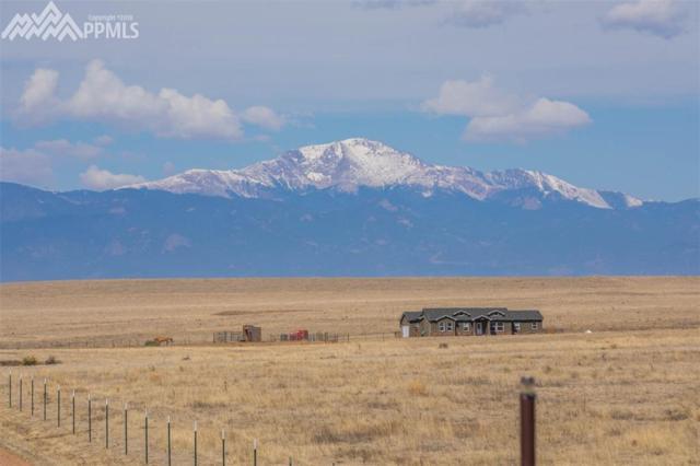 3920 S Enoch Road, Colorado Springs, CO 80930 (#4235784) :: Action Team Realty