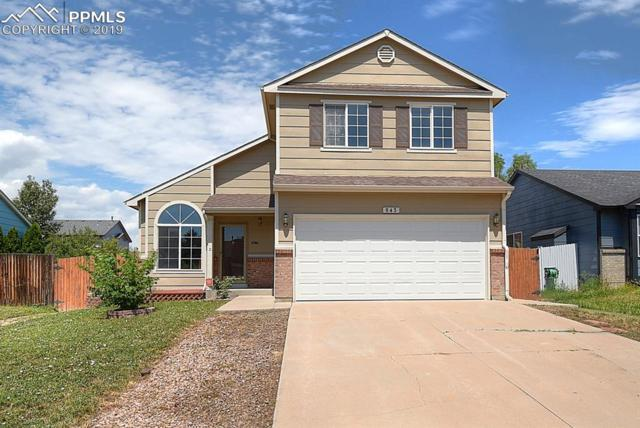 843 Hayloft Lane, Fountain, CO 80817 (#4242549) :: Tommy Daly Home Team