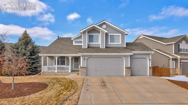 4193 Black Feather Trail, Castle Rock, CO 80104 (#4243112) :: Action Team Realty