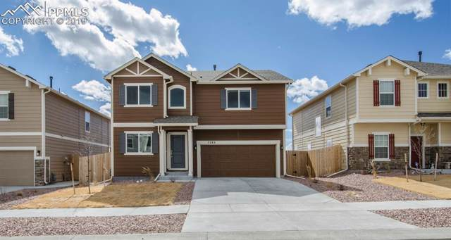 7283 Thorn Brush Way, Colorado Springs, CO 80923 (#4247422) :: Tommy Daly Home Team