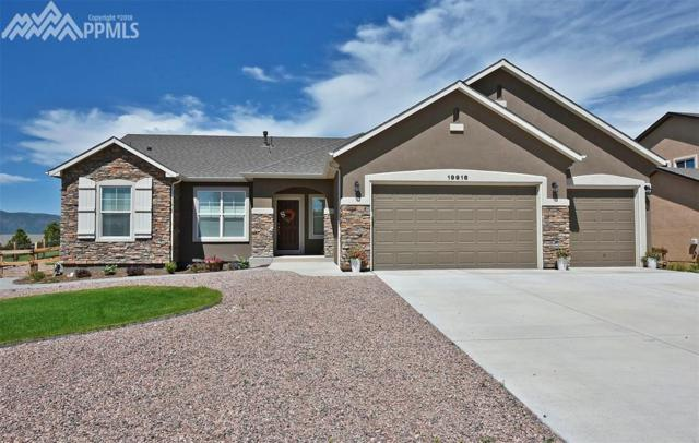 19916 Alexandria Drive, Monument, CO 80132 (#4248250) :: 8z Real Estate
