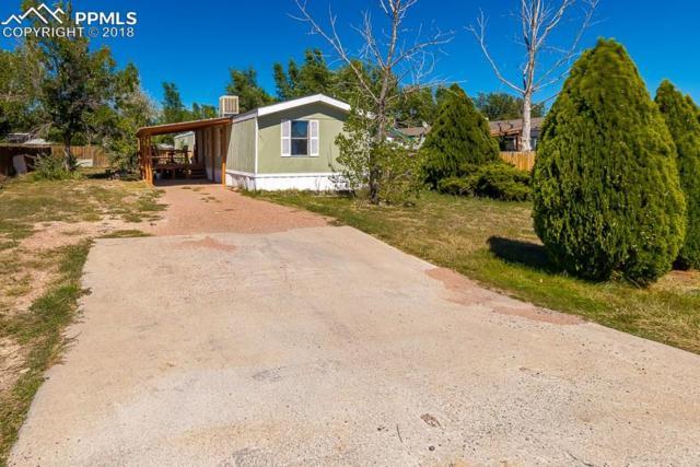 141 E Cellini Drive, Pueblo West, CO 81007 (#4251265) :: Action Team Realty