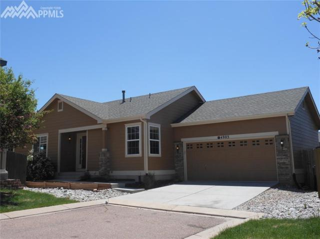 4903 Turning Leaf Way, Colorado Springs, CO 80922 (#4251457) :: Action Team Realty