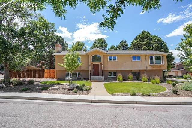 195 Fox Hill Lane, Colorado Springs, CO 80919 (#4252396) :: Tommy Daly Home Team