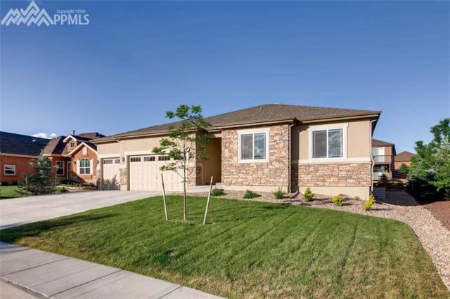 16635 Mystic Canyon Drive, Monument, CO 80132 (#4253244) :: Action Team Realty