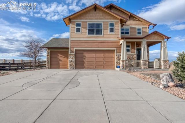 7495 S Antelope Meadows Circle, Falcon, CO 80831 (#4255673) :: The Treasure Davis Team