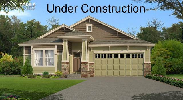 10111 Devoncove Drive, Peyton, CO 80831 (#4255778) :: Tommy Daly Home Team