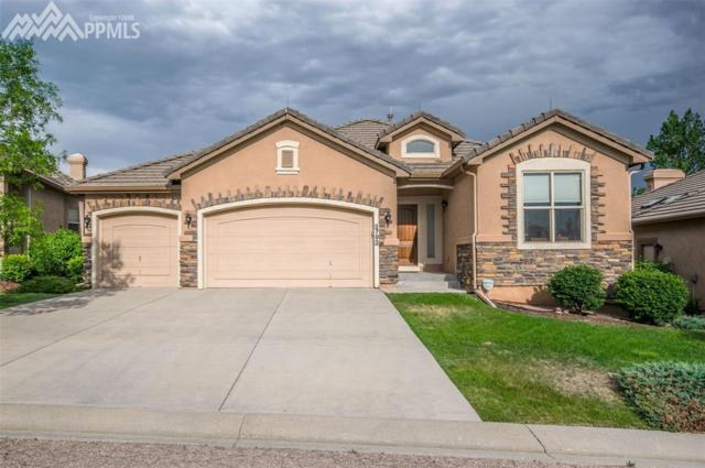 2793 Crooked Vine Court, Colorado Springs, CO 80921 (#4257353) :: The Peak Properties Group