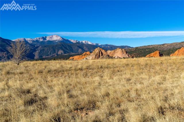 2954 Treeline View, Colorado Springs, CO 80904 (#4257954) :: CENTURY 21 Curbow Realty