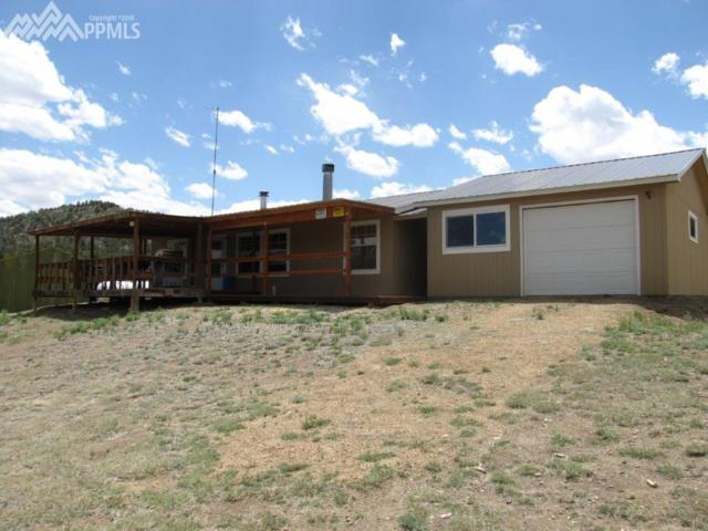 659 Prairie Dog Road, Cotopaxi, CO 81223 (#4258999) :: Jason Daniels & Associates at RE/MAX Millennium
