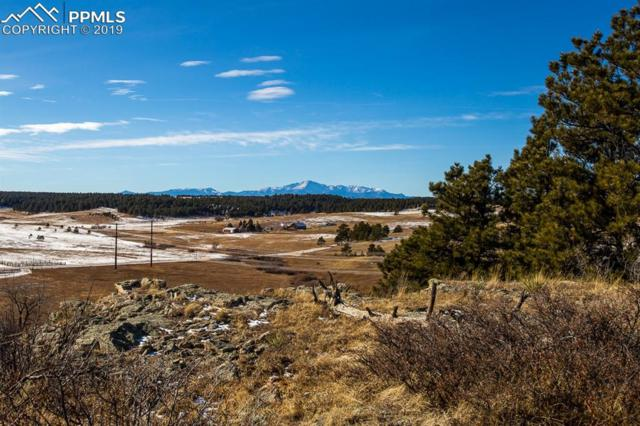 00 County Line Road, Elbert, CO 80106 (#4260559) :: CENTURY 21 Curbow Realty