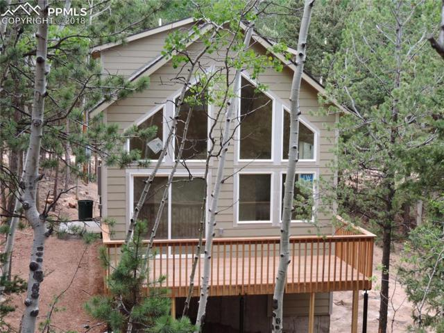 33 Tecumseh Lane, Woodland Park, CO 80863 (#4261636) :: Colorado Home Finder Realty