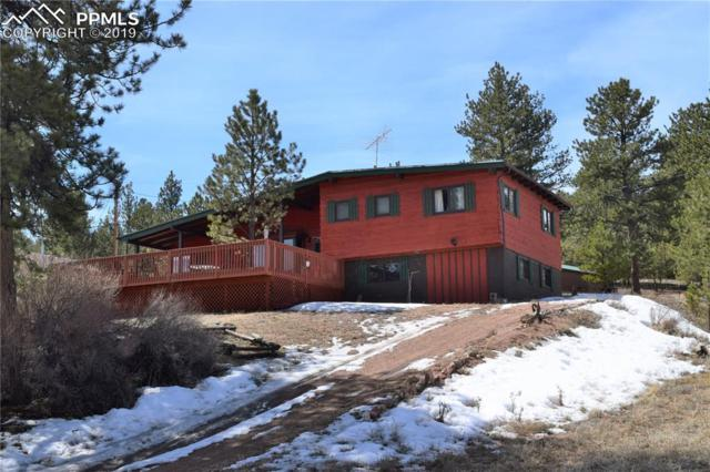 991 Midland Court, Lake George, CO 80827 (#4262575) :: Tommy Daly Home Team