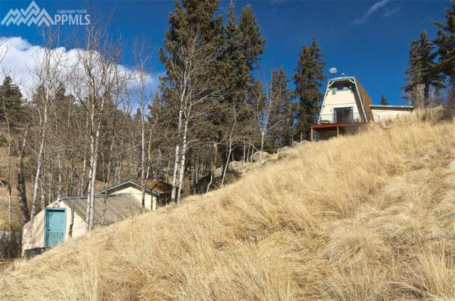 1074 Pathfinder Road, Florissant, CO 80816 (#4263814) :: The Hunstiger Team
