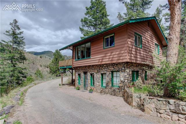 10135 Wildwood Road, Cascade, CO 80809 (#4264103) :: 8z Real Estate