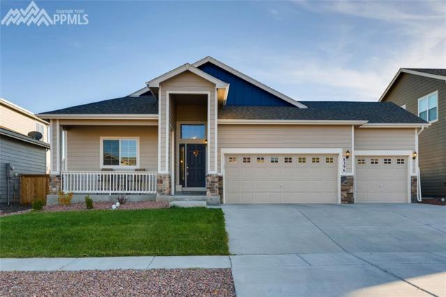 8396 Hardwood Circle, Colorado Springs, CO 80908 (#4266177) :: 8z Real Estate