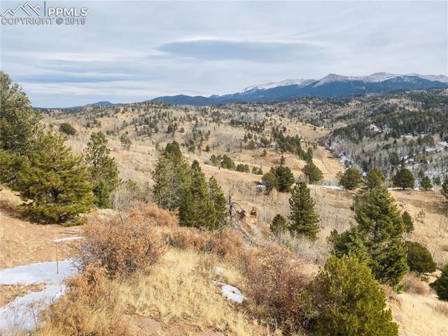 720 Golden Cycle Circle, Cripple Creek, CO 80813 (#4268038) :: The Kibler Group