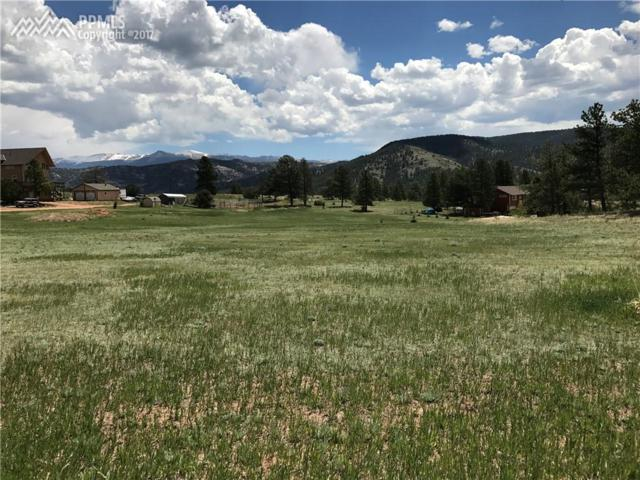 320 Wavelyn Ann Drive, Florissant, CO 80816 (#4268931) :: 8z Real Estate