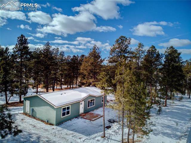 184 Homestead Lane, Florissant, CO 80816 (#4271671) :: Tommy Daly Home Team
