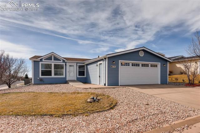 7795 Valley Quail Point, Colorado Springs, CO 80922 (#4277933) :: Colorado Home Finder Realty